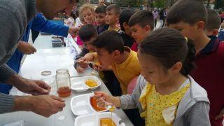 Hocalar İlkokulunda 'Dünya Arı Günü' etkinliği