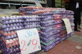 MHP Milletvekili Taytak, yumurta üreticilerinin sorunlarını TBMM'ye taşıdı