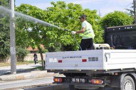 Şuhut'ta zararlı haşerelere karşı ilaçlama çalışmaları