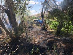 Şuhut'ta arazide yangın çıktı