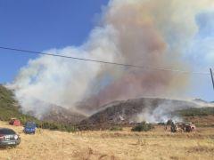 Afyon'da orman yangını