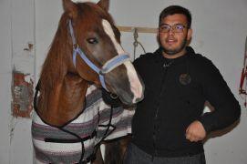 Sandıklılı rahvan atçılar Türkiye Şampiyonasına hazırlanıyor