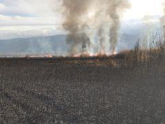 Eber Gölü'ndeki sazlıkta yangın