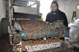 Musevilerin Hamursuz Bayramı'nda tüketecekleri fındık yağı Afyonkarahisar'dan karşılanıyor