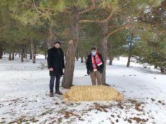 Kış şartlarının ağırlaştığı Akdağ'da yaban hayatı unutulmadı
