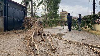 Şiddetli rüzgar ağacı devirdi, elektrik ve iletişim hatlarını kopardı